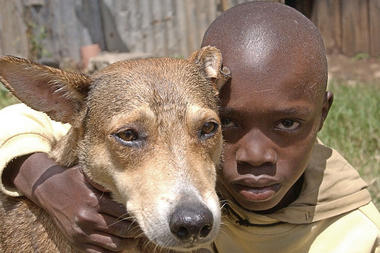 Felix Omondi, an 11-year-old student with his dog, now named Mkombozi (Saviour), in a compound on the outskirts of Nairobi.